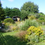 Garden_9aug10_005