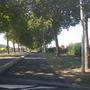An Avenue in France
