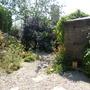 gravel garden in Waterperry