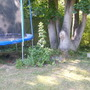 trampoline and flower border
