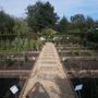 Cut_flower_garden