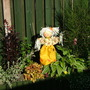 new scarecrow from kettlewell