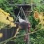 My_little_dove_005