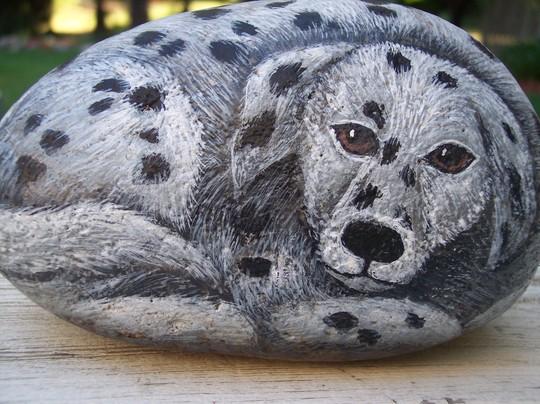 Dalmation rock