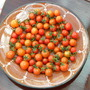 100_s_and_1000_s_tomaten_140810