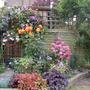 Garden_023