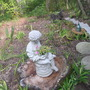 side garden (ornamental basil, day lilly's, shasta daisy, sedum, cordalis lutea etc)