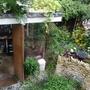 my garden and shed (Indigofera heterantha (Indigofera))