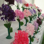 Sweet pea entries