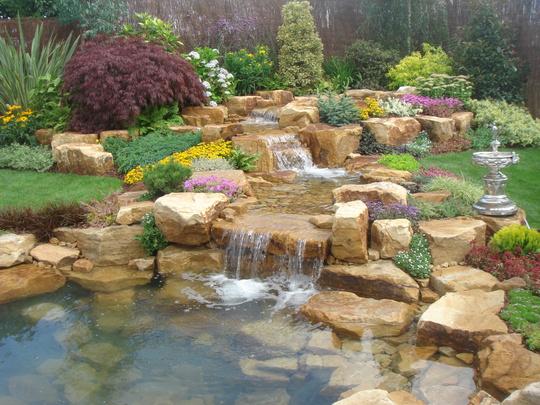 Tarleton Speciman Plants display garden