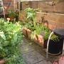 Gardensouth2