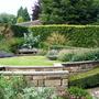 Sylvia's garden