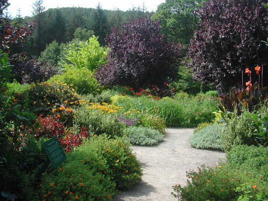 At Rosemoor - the square garden