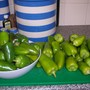 Peppers_2005_001