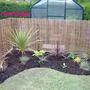 Back border planted