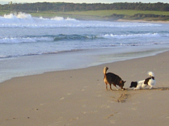 Jenni and Frances on the beach at Shellharbour