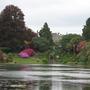 View from Cascade Bridge, Sheffield Park Gardens