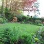 garden view from the kitchen door