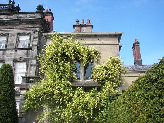 Biddulph Grange Gardens.16