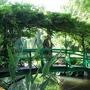 Monet's Garden 1