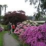 Leonardslee Gardens4
