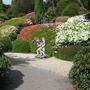 Leonardslee Gardens10