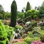 Leonardslee Gardens13
