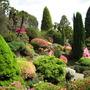 Leonardslee Gardens14