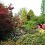 Leonardslee Gardens15