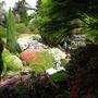 Leonardslee Gardens16