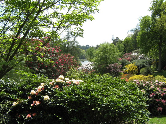 Leonardslee Gardens29
