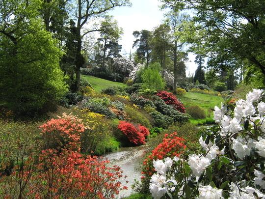 Leonardslee Gardens33