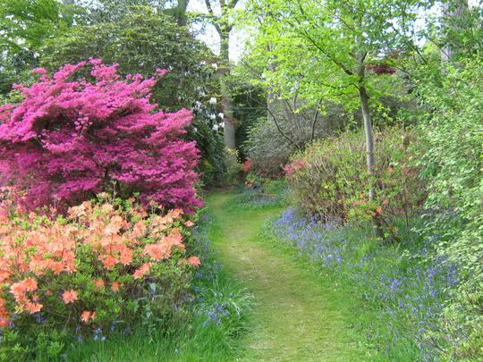 Leonardslee Gardens35