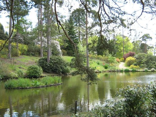 Leonardslee Gardens36