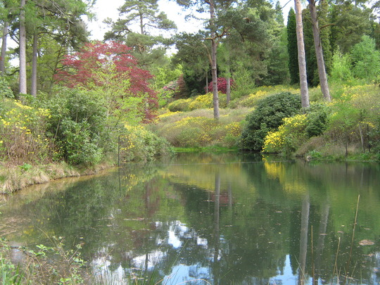 Leonardslee Gardens38