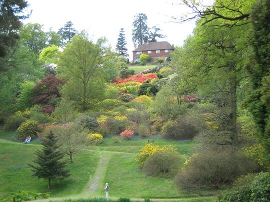 Leonardslee Gardens39