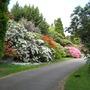 Leonardslee Gardens44