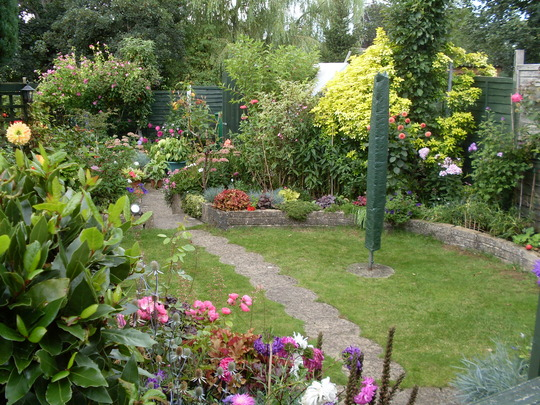 Garden colour Sept 12th