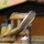 SQUIRRELL ACROBAT EATING BIRDS FOOD
