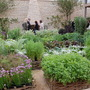 Fantastic kitchen garden