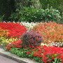 Need_gardens_001