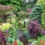 Lower_garden_25_may_08