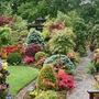 Upper garden 25 May 08.jpg