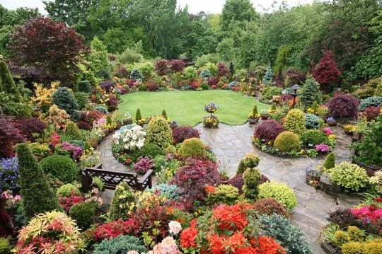 Upper garden 25 May 08