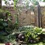 My_garden_2010_243