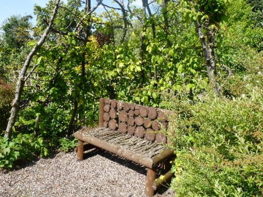 The Hornbeam Arbor and Bench