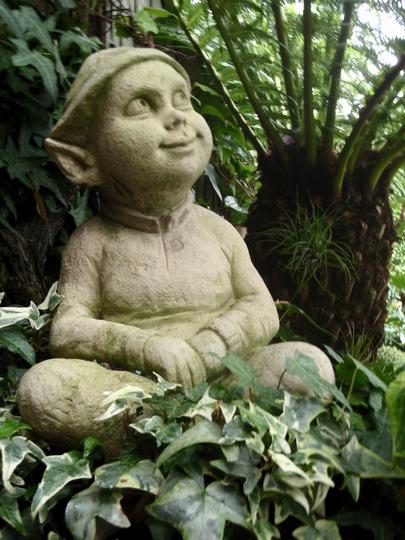 My garden 2010