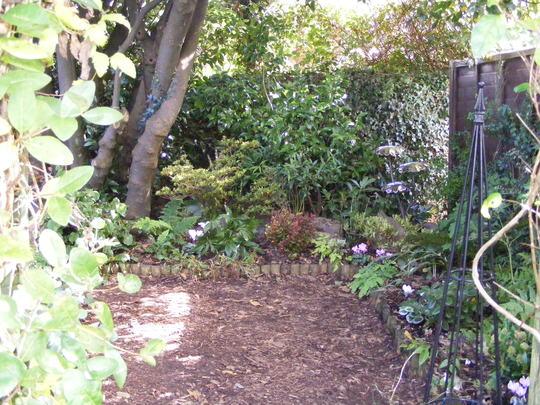 shade garden 2