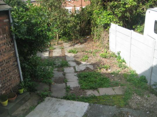 Back garden (before)