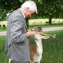 Feeding Deer leaves at Burghley House